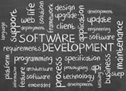 Database and Software Development